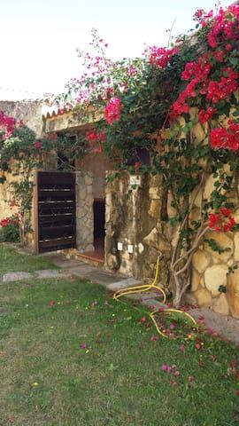 CASA IN AFFITTO  VISTA MARE - Sant'Elmo - Casa