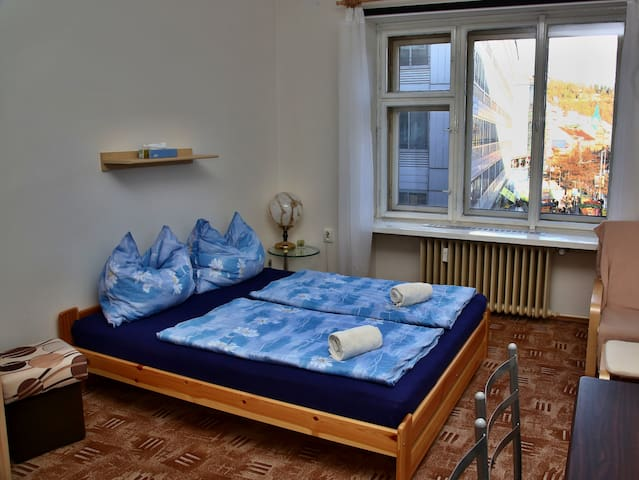 Cozy flat Prague Andel (children friendly)