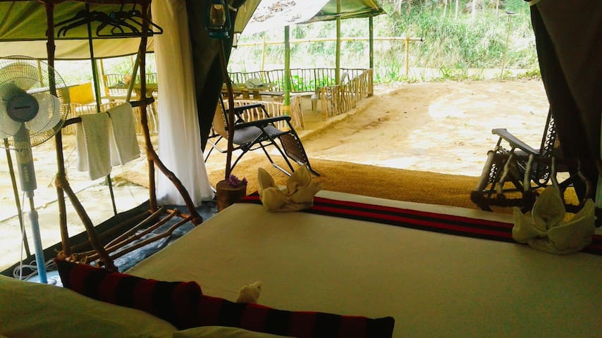 360 Rain Forest River Side Camping 2 -Sinharaja