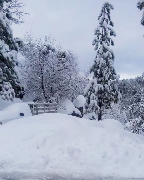 Lots of new snow! View in front of the cabin.