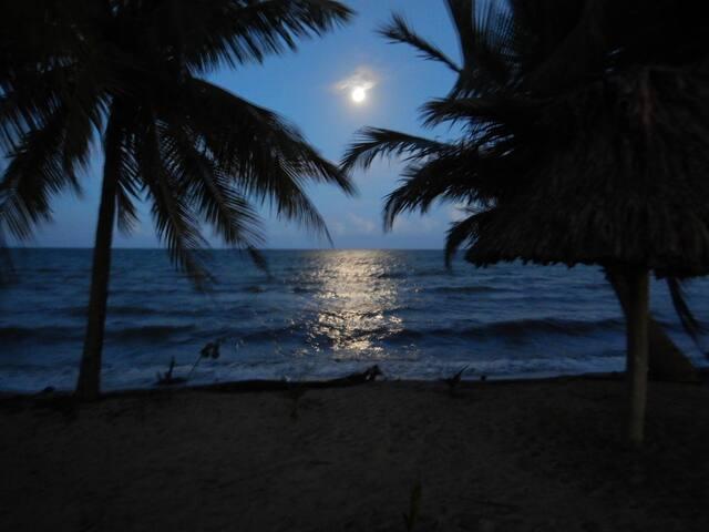 BLU HEVEN BEACH CABANA and ADVENTURE SERVICES
