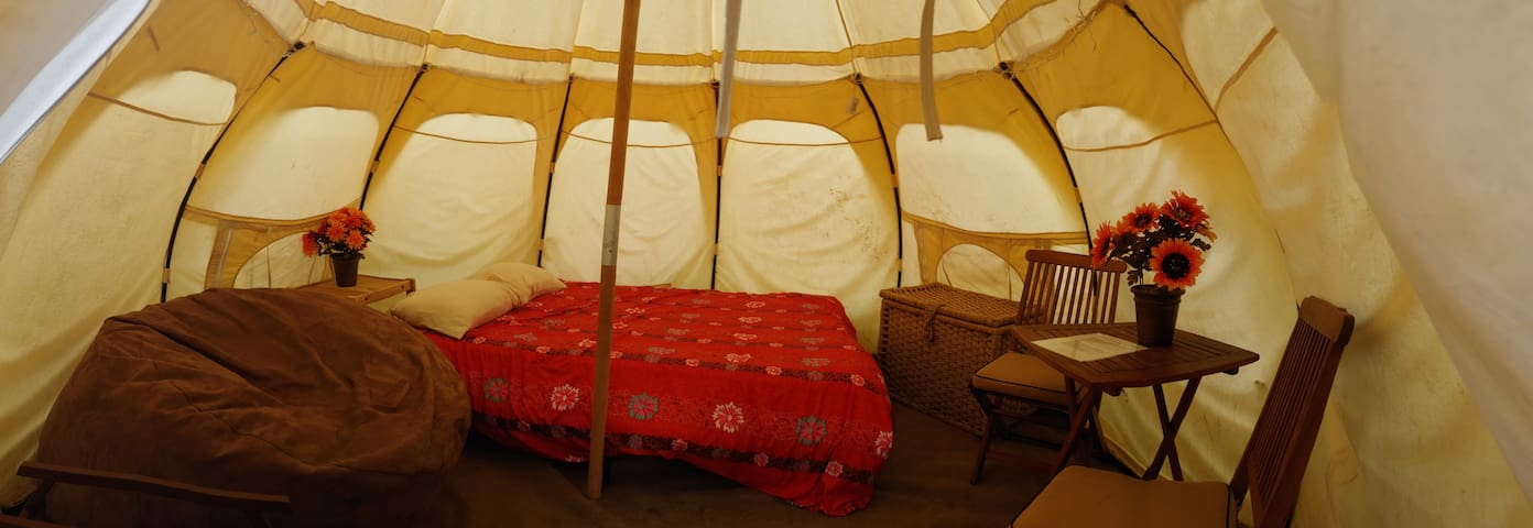 What the inside of your yurt will look like!