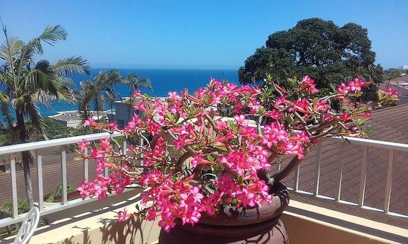 Exclusive Apartment with Sensational Sea Views