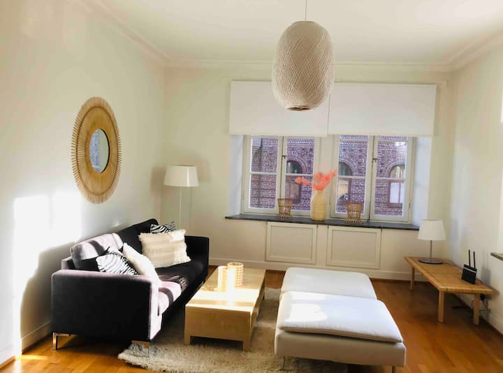 Super nice & spacious flat in city center