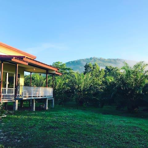 Kalai Land - TH - House