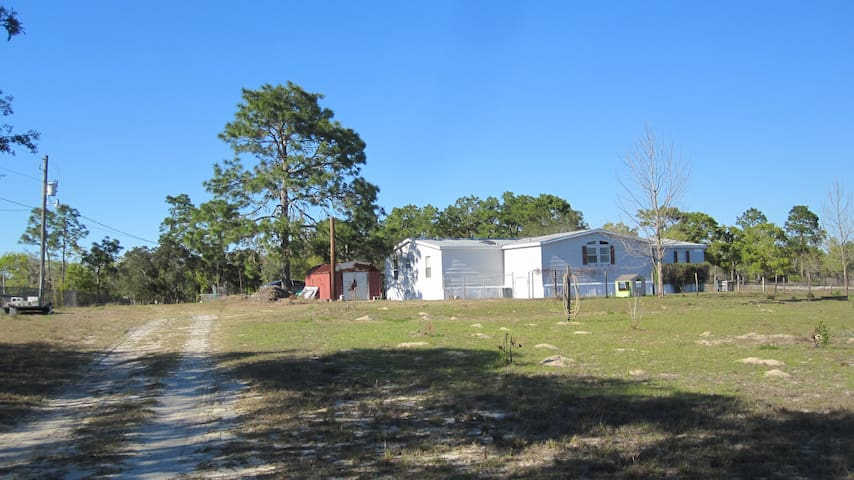 Country life - Brooksville - House