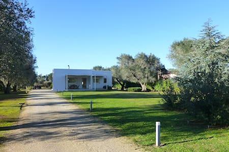 Villa in Mesagne - Brindisi, Puglia Country House