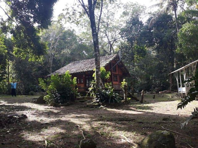Casa no meio do Mato, frente para o Rio no Bonete