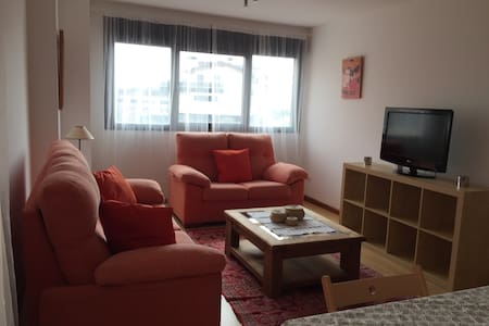 Charming bright apartment in Haro - Haro