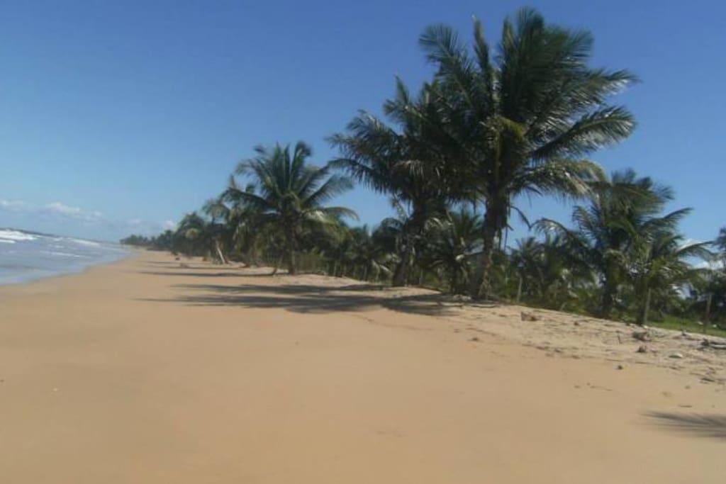 Praia no fundo da pousada