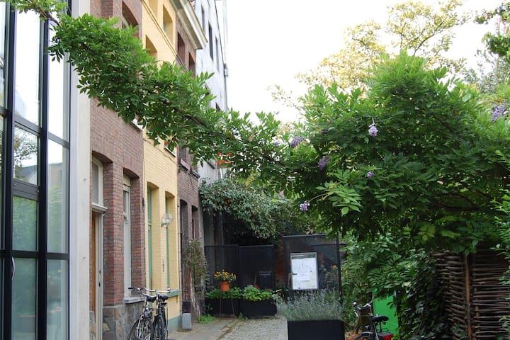 Laat je verrassen en kom mee Mechelen ontdekken!