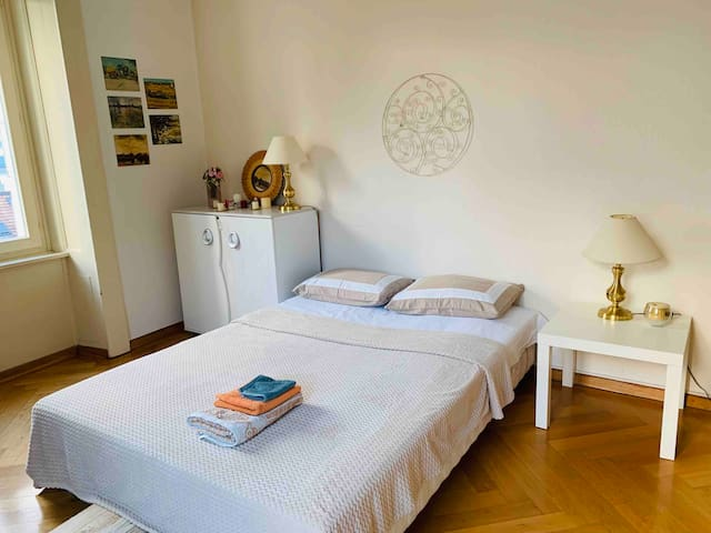 Private big room near train station & center
