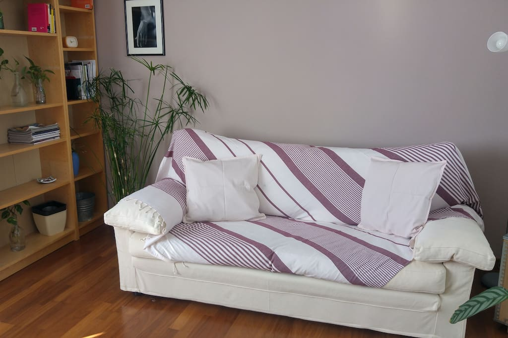 sofabed/living