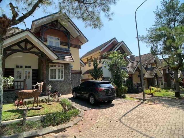 MN Villas BB Kota Bunga Cipanas Puncak - 3 Bedroom