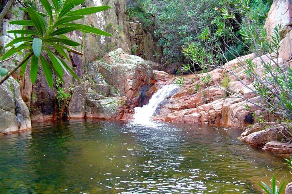 natural fresh water pools