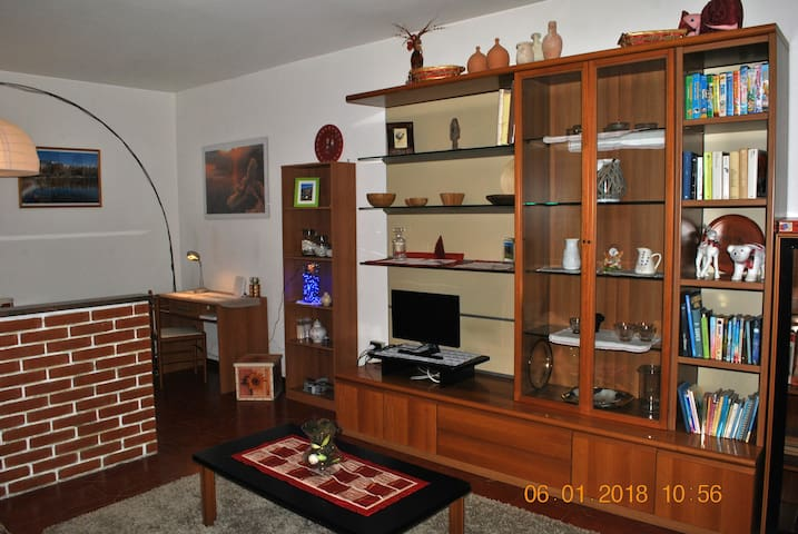 Appartamento spazioso a Sondrio