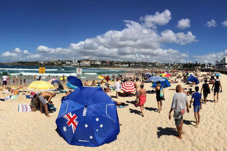 Australia's favourite beach just 500m away