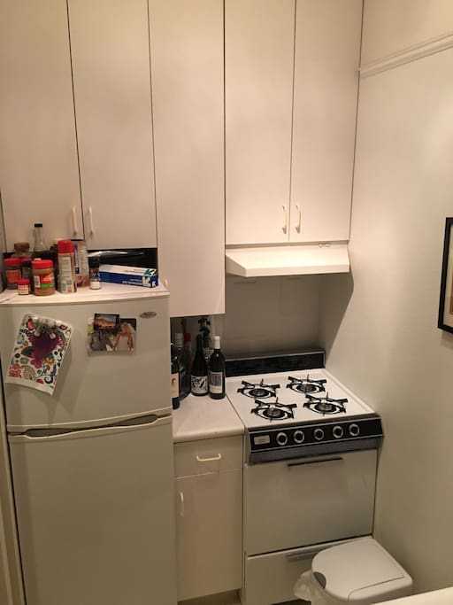 Kitchen (there's a counter, sink, microwave, and toaster oven as well)