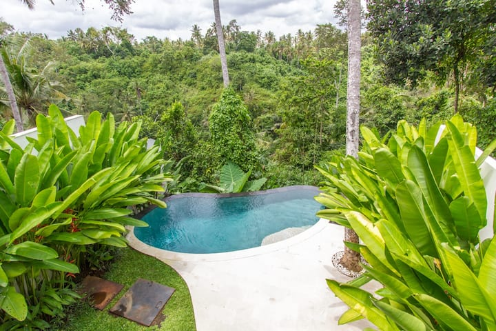 Beautiful Cliff-Side Jungle Villa