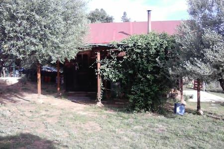 Villa Kunterbunt. Finca permacultura. - Valverde del Camino - 小木屋