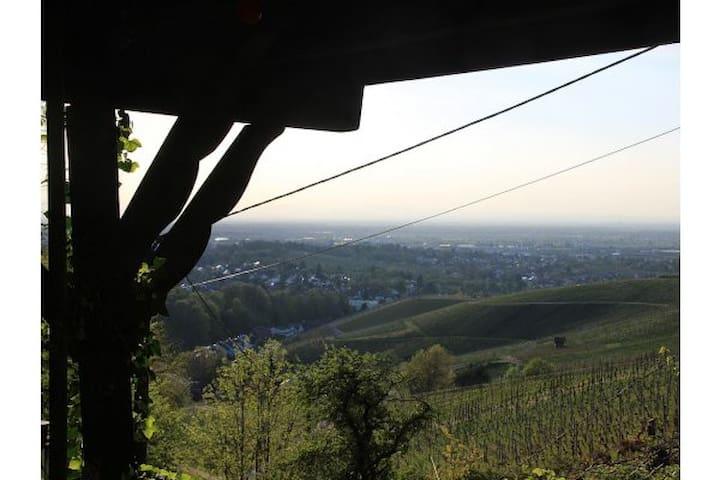 Ferienhaus Vogesenblick