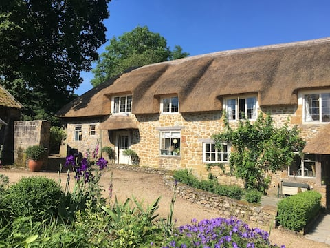 Bluebell Grey, in the heart of rural Somerset.