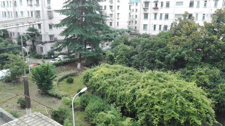 窗外小区中心花园