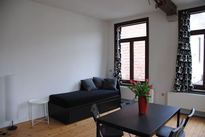 Gezellig appartement in historisch stadscentrum
