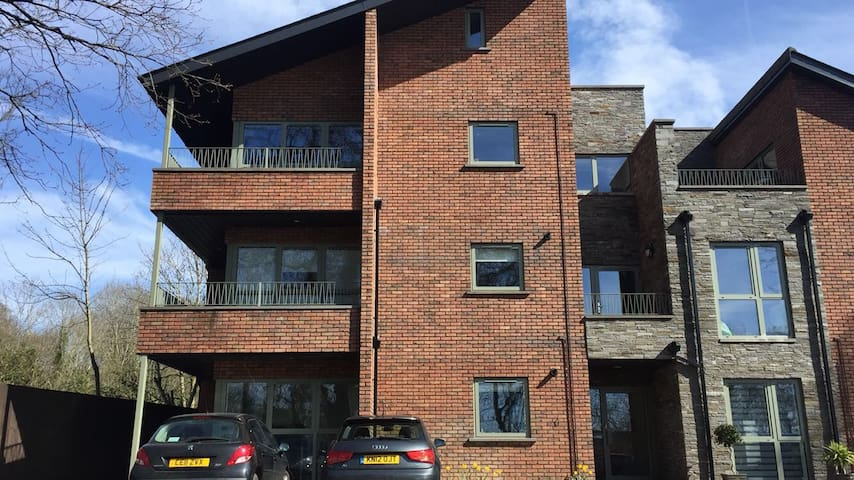 two bedroom apartment in penylan cardiff - Cardiff - Apartment