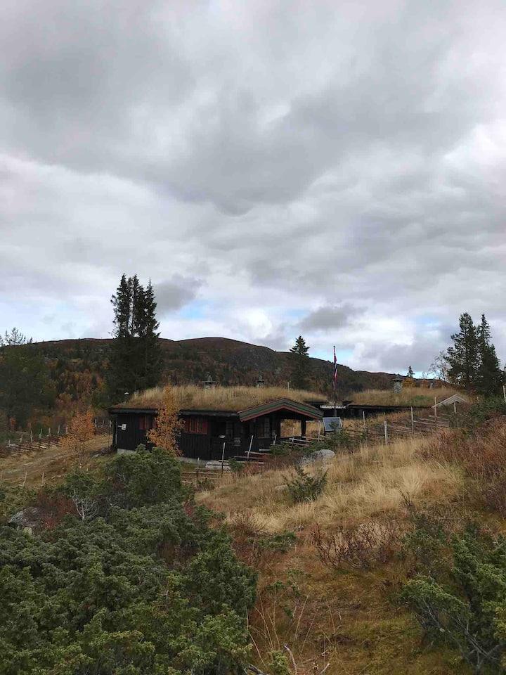 Vakre Bjødalen i Valdres. Naturskjønne omgivelser.