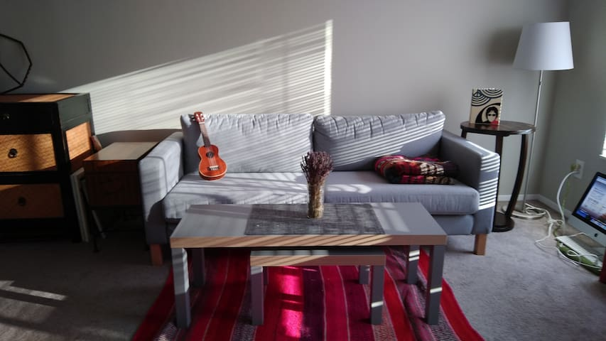 Clean & Convenient 1 BR across from Whole Foods