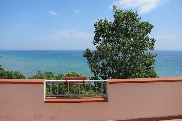 Apartment on the first floor with private terrace, 20m from the beach.
