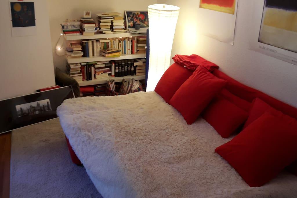 Wohnzimmer mit Bücherwand