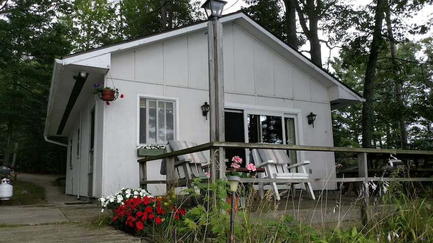 Shawn's Waller Cabin on Spider Lake, Traverse City