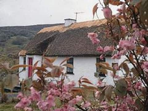 Thatched Cottage in Connemara close to Galway City