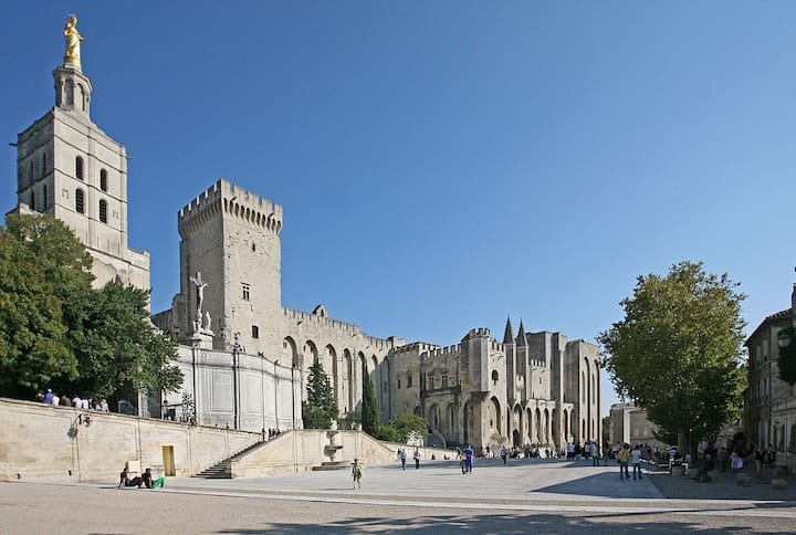 Meet in front of the Palais des Papes