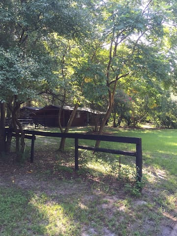 Old Horse Farm - Ocala