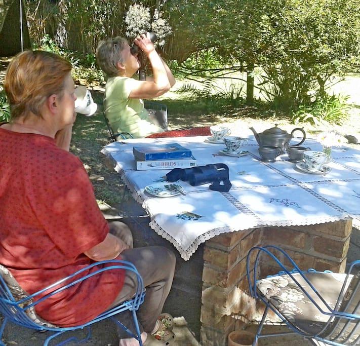 Enjoy your breakfast and birding in the garden