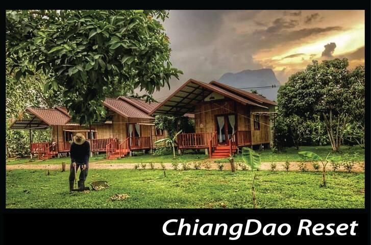เชียงดาวรีเซ็ต 2  ( ChiangDao Reset 2 )