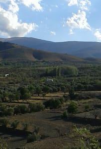 Casa Rural encantadora al pie de la Sierra. - Huéneja - Xalet