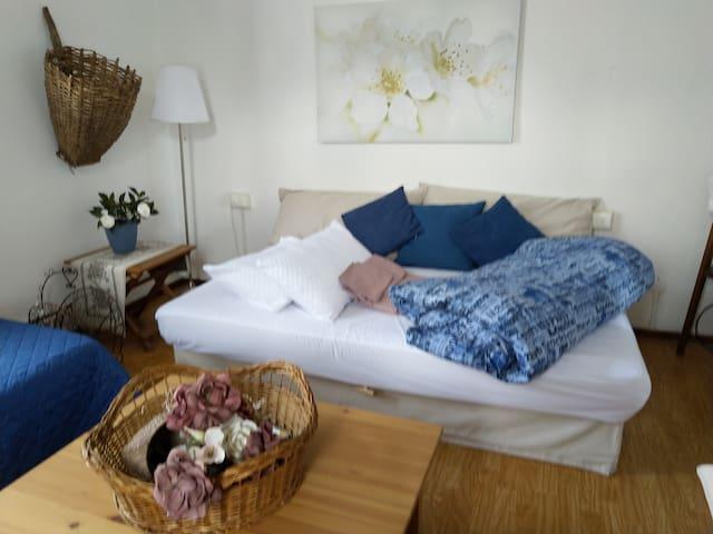 Stanza con divano letto estraibile e letto singolo aggiuntivo