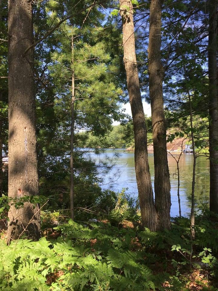 Muskoka Treetop Cabin 3br 1ba Lakefront Roadaccess