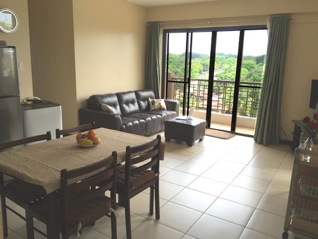 Spacious Redwoods Condo Fairview, Novaliches, Q.C. - Caloocan - Condominium