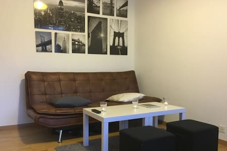 Charming Studio in the Center of Lausanne - 로잔(Lausanne)