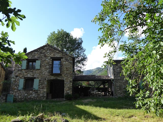 Le Petit Moulin, tranquil renovated watermill - Saint-Vincent-d'Olargues - Otros