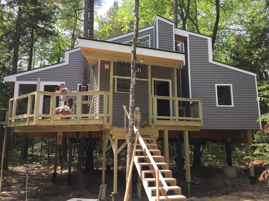 View of the front of the treehouse. (June 12th)