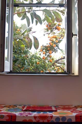 Appartamento Alloro nel Giardino del sole - Roccarainola - Гестхаус