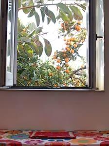 Appartamento Alloro nel Giardino del sole - Roccarainola - 住宿加早餐