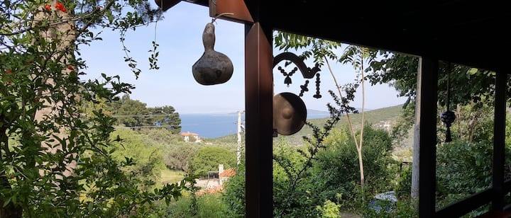 İzmir, Karaburun'da deniz, dağ ve köy deneyimi