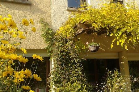 maison ensoleillée avec jardin - Crégy-lès-Meaux